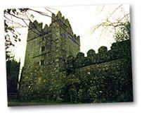 Rathmacknee Castle County Wexford